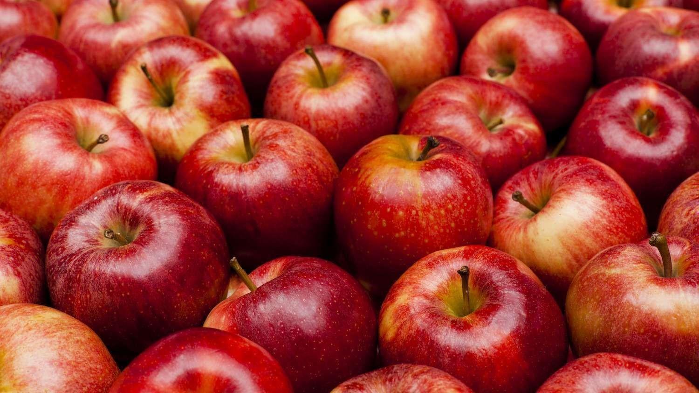 Bà bầu có nên ăn táo không? 7 lợi ích tuyệt vời khi ăn táo trong thai kỳ