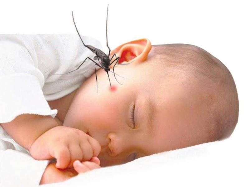 7 tác dụng của dầu tràm với trẻ sơ sinh và trẻ nhỏ mẹ nên biết
